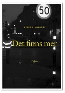Peter Lindforss Det finns mer