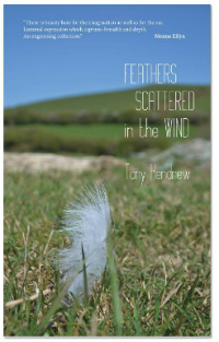 Tony Kendrews Feathers scattered in the wind