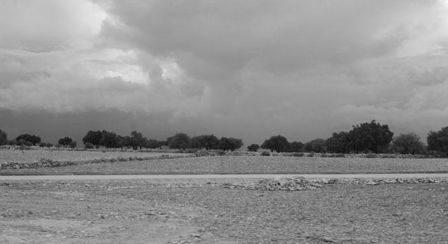 Sahara den 29 november 2014. Foto: Anita Westin.