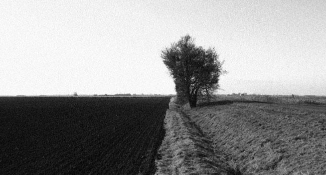 Jord. Foto: c. j. flognman