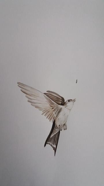 illustration-1_sara-ostman