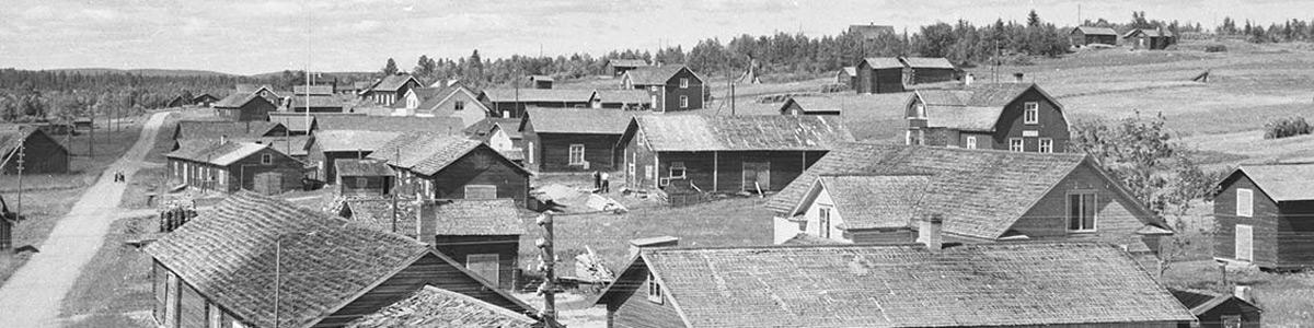 Majvor Mäki Sjöberg