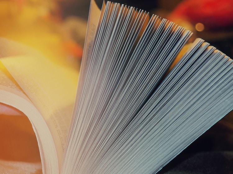 Möt Populär Poesis nya temaredaktörer